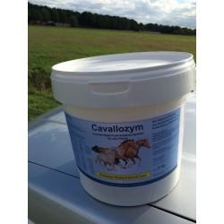Cavallozym - 5 kg